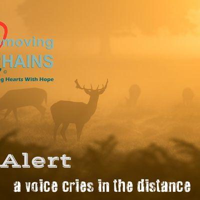 be-alert-600DDA9BEE0-8DC2-7FDA-62C1-39232785BAC7.jpg